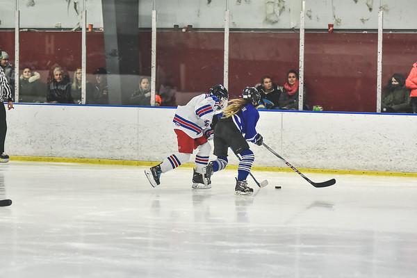 Leafs-2