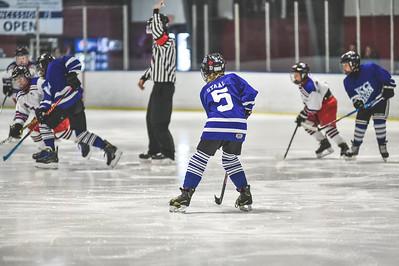 Leafs-1