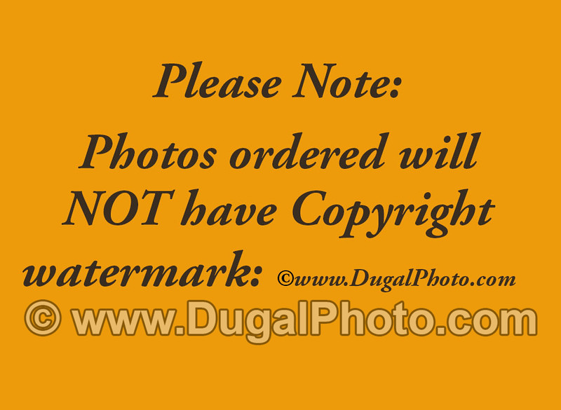 09-01- photos will not have watermark