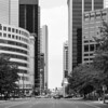 Streets Of Downtown Denver In Monochrome
