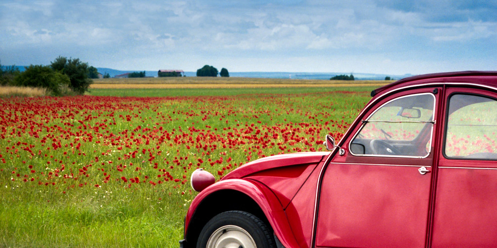 Citroen 2CV and Poppies