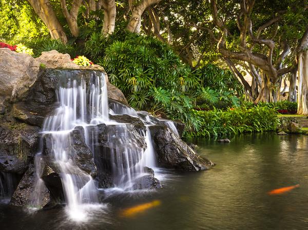 Koi and Waterfall