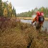 Crossing a beaver dam.