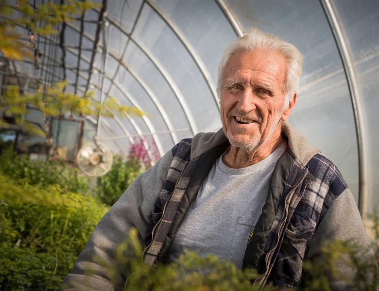 Ted Biernacki, Ted's Greenhouse