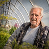 Ted Biernacki, Ted's Greenhouse