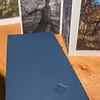 """Panoramic Tree Portraits"" artist book"