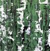 Sage Cascade-Iorillo, 40x40