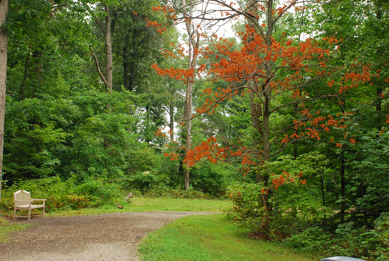 Bernheim Arboretum & Research Forest