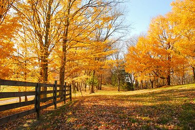 Autumn in Bowling Green, KY