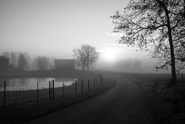 I love the moody ethereal look of this rural farm.