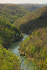 KY BIG SOUTH FORK NAT RIVER BEAR CREEK OVERLOOK APRJI_MG_4916SSW