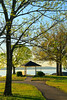 KY KENLAKE STATE RESORT PARK BAY VIEW KENTUCKY LAKE APRAF_MG_7696MMW