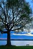 KY KENLAKE STATE RESORT PARK BAY VIEW KENTUCKY LAKE APRAF_MG_0841MMW