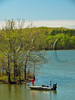 KY GOLDEN POND LAND BETWEEN THE LAKES NRA LAKE BARKLEY DEVILS ELBOW  APRAF_4160004MMW