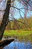 KY GRAND RIVERS LAND BETWEEN THE LAKES NRA NATURE STATION HEMATITE TRAIL HEMATITE LAKE APRAF_MG_6982MMW