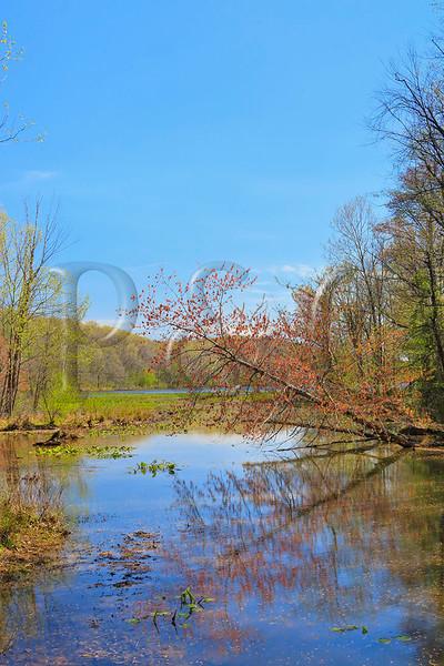 KY GRAND RIVERS LAND BETWEEN THE LAKES NRA NATURE STATION HEMATITE TRAIL HEMATITE LAKE APRAF_MG_7008eMMW