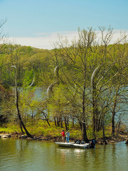 KY GOLDEN POND LAND BETWEEN THE LAKES NRA LAKE BARKLEY DEVILS ELBOW  APRAF_4160022MMW