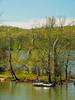 KY GOLDEN POND LAND BETWEEN THE LAKES NRA LAKE BARKLEY DEVILS ELBOW  APRAF_4160022MMW