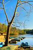 KY PENNYRILE FOREST STATE RESORT PARK BOAT DOCK SUNSET APRAF_MG_7885MMW