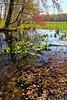 KY GRAND RIVERS LAND BETWEEN THE LAKES NRA NATURE STATION HEMATITE TRAIL HEMATITE LAKE APRAF_MG_6994bMMW
