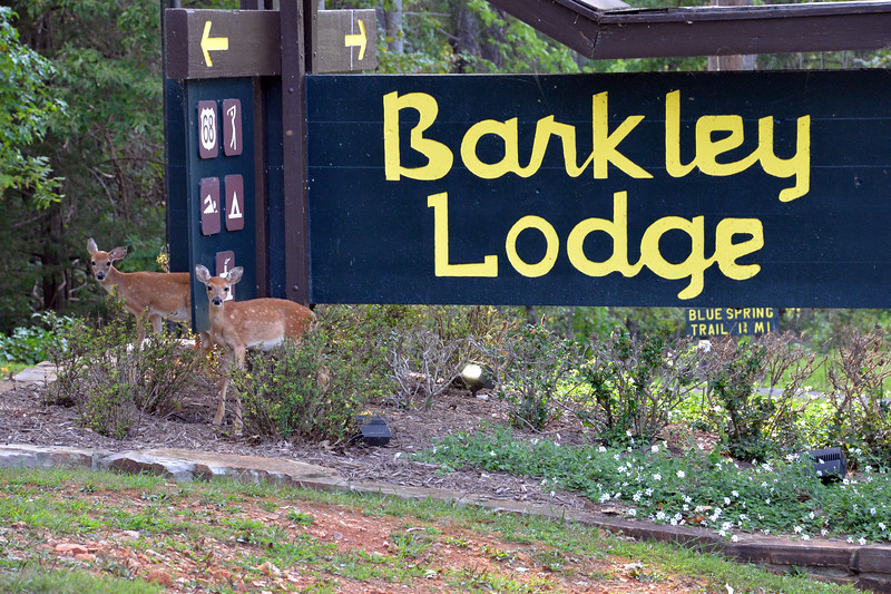 Barkley Lodge - Land Between The Lakes