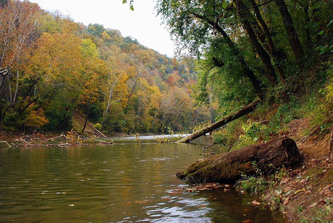 Autumn - Green River - Mammoth Cave National Park