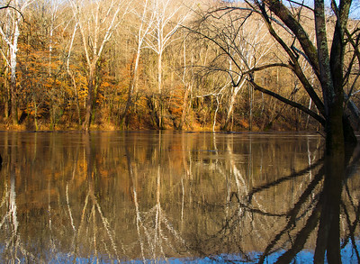 Green River - Mammoth Cave National Park