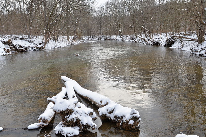 South Fork Branch of the Little Barren River, Knob Lick, KY