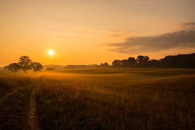 Sun rising above the hay field