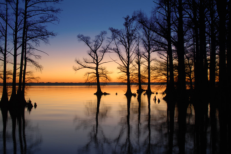 Sunrise at Reelfoot Lake