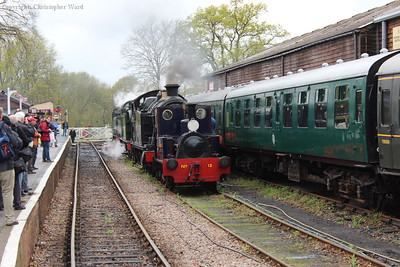 Marcia and her more illustrious companions in the loop at Tenterden