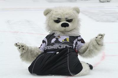Уходящий год стал лучшим за всю историю хоккея в Челябинске