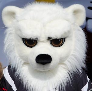 """Белый медведь. Талисман хоккейного клуба """"Трактор"""" (Челябинск)"""