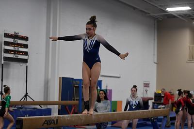gymnastics_2896