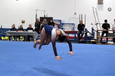 gymnastics_3842