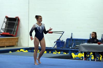 gymnastics_3884