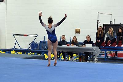 gymnastics_3876
