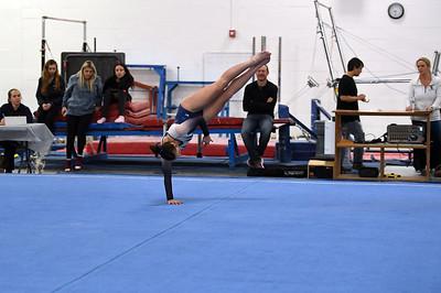 gymnastics_3891