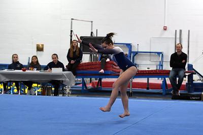 gymnastics_3914