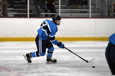 hockey_8391