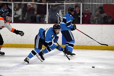 hockey_8387