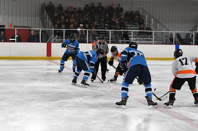 hockey_8454