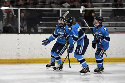 hockey_8423
