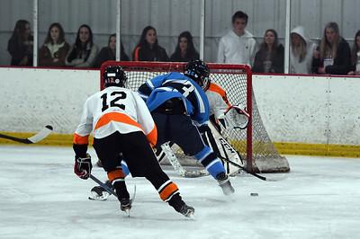 hockey_8405