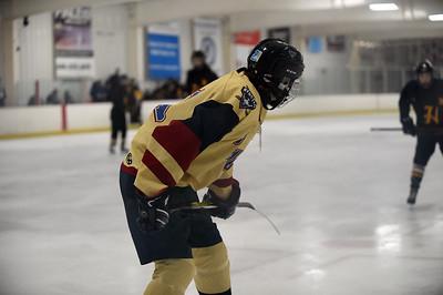 hockey_4631