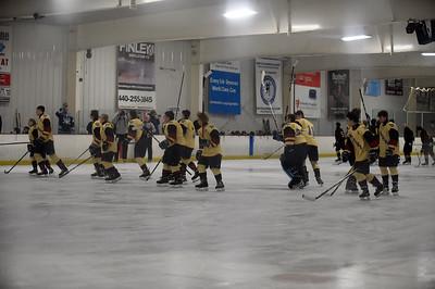 hockey_4599