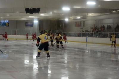 hockey_9800