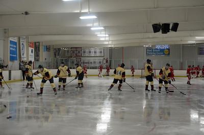 hockey_9785