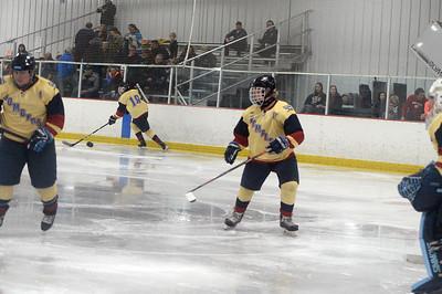 hockey_9876