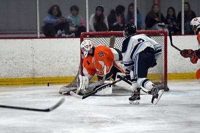 hockey_3393